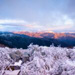 The Mt Buller Village is a beautiful place to stay, right up in the snow